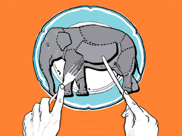 Как съесть слона по частям. Практика внедрения большой системы через микропроекты